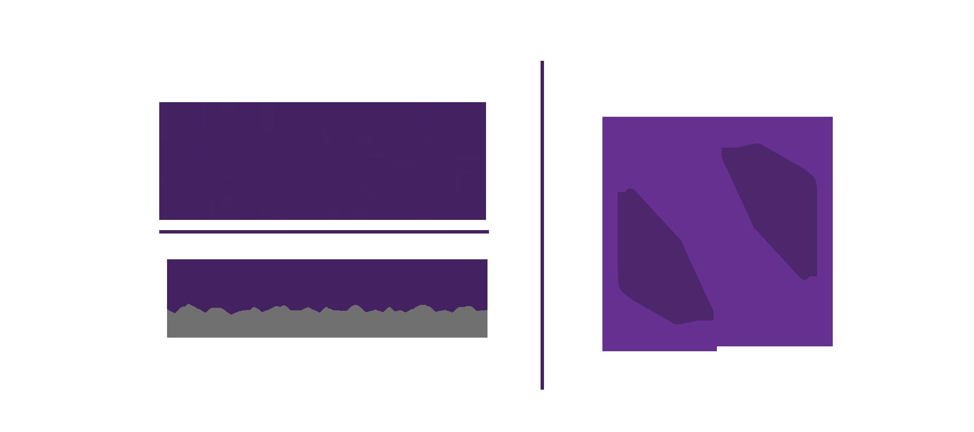 Noavaran Solutions Company